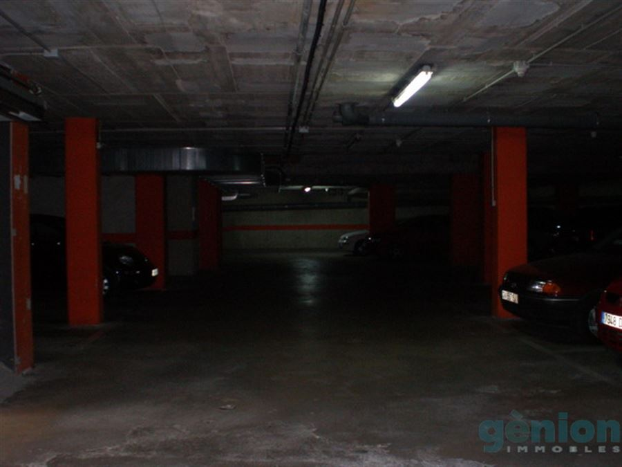 PARKING SPACES FOR BIG AND MEDIUM CAR