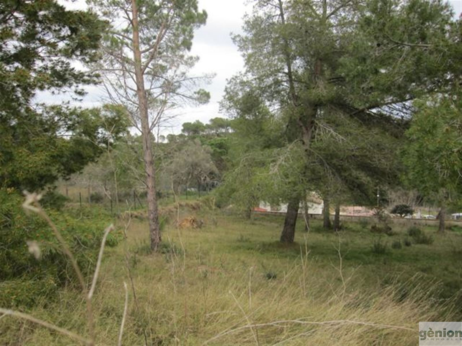 SET OF 39 PLOTS IN PALAMÓS, 32.822M² OF TOTAL LAND